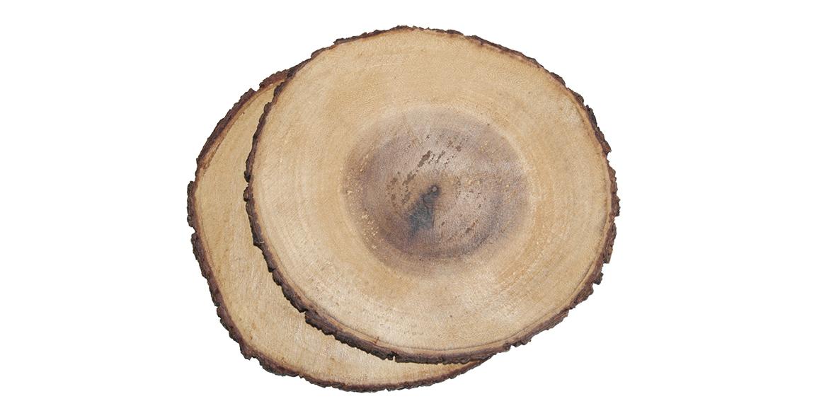 houten bordjes van boomstam Label25